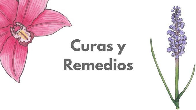 curas y remedios